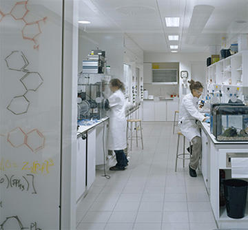 Photo of two people working in a chemistry laboratory